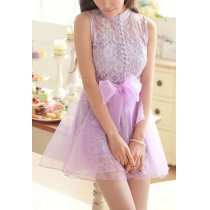 Bowknot Mesh Lace High Neck Button Front Tank Dress