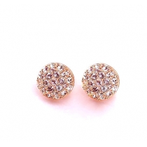 Chic Bling Overall Rhinestone Round Studs Earrings