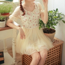 Sheer Short Sleeve Floral Print Bowknot Lace Skater Dress
