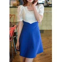 Contrast Color Embellished Crewneck Short Sleeve Lace Dress