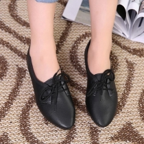 Fashion Pointed Toe Flat Heel Lace-up Shoes