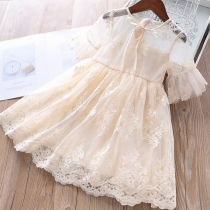 Sweet Style Short Sleeve Round Neck Gauze Spliced Embroidery Princess Dress for Kids