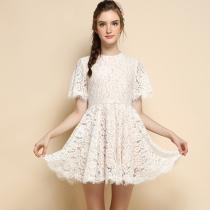 Fashion Round Neck Short Sleeve Slim Fit Lace Dress
