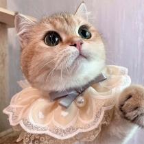 Sweet Style Lace Spliced Pets Bibs